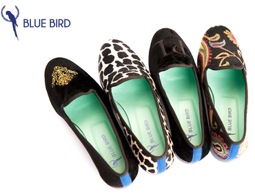 206367_357093_blue_bird_shoes_web_